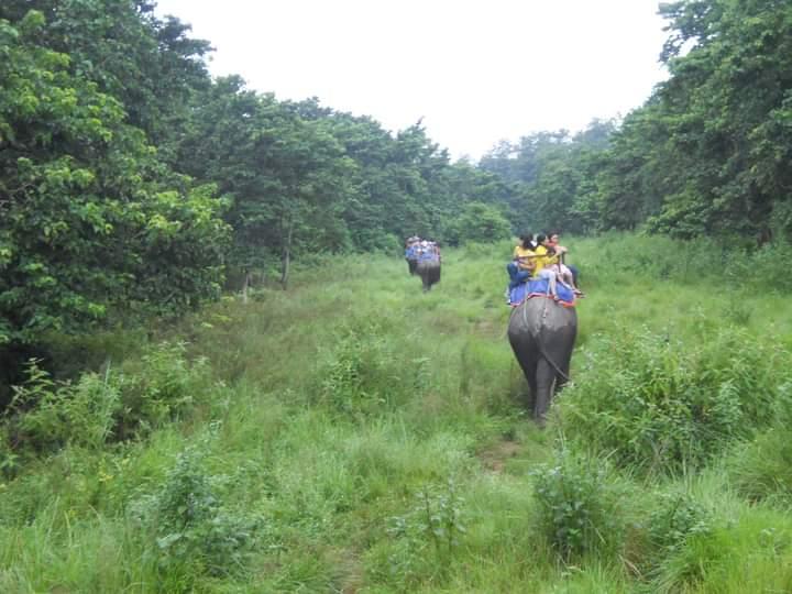 Chitwan National Park, Sauraha Package Tour